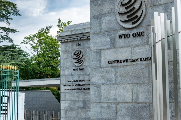 WTO is Lastly Poised to Verify a New Director-Common. It's the Best Downside to Resolve.